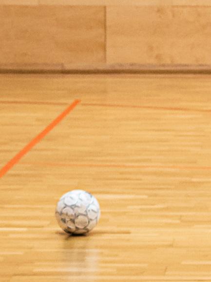 Augustat Parkett - Sportboden Sanierung